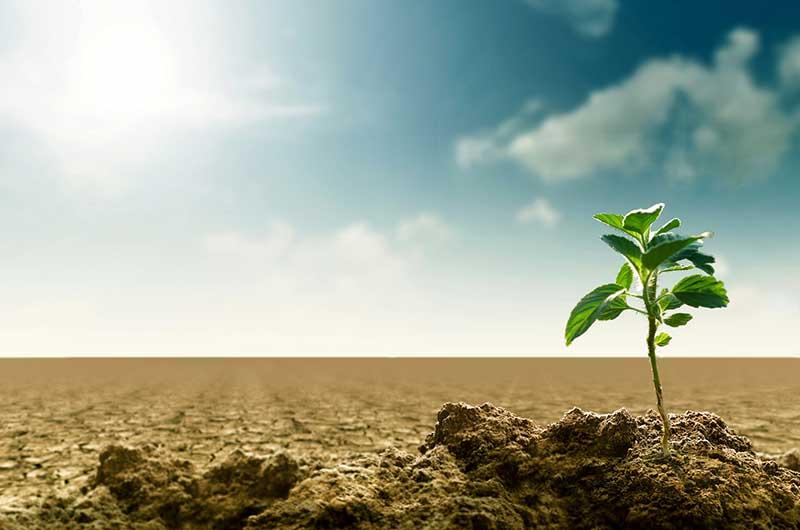 """Nachhaltiges Wirtschaftswachstum und Klimawandel: """"Nicht so schwierig, wie gedacht."""""""