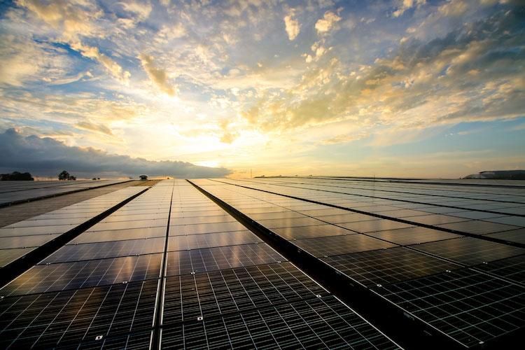solarenergie-photovoltaik-pangaea-life-