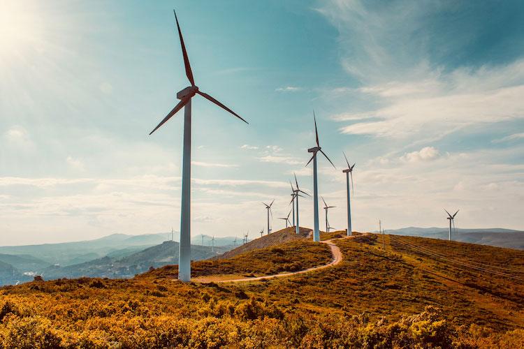 windkraft-pangaea-life